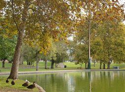 Rymill Park - credit to Brett Williamson